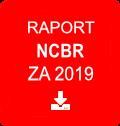 Ikona - raport NCBR za 2018 - plik do pobrania